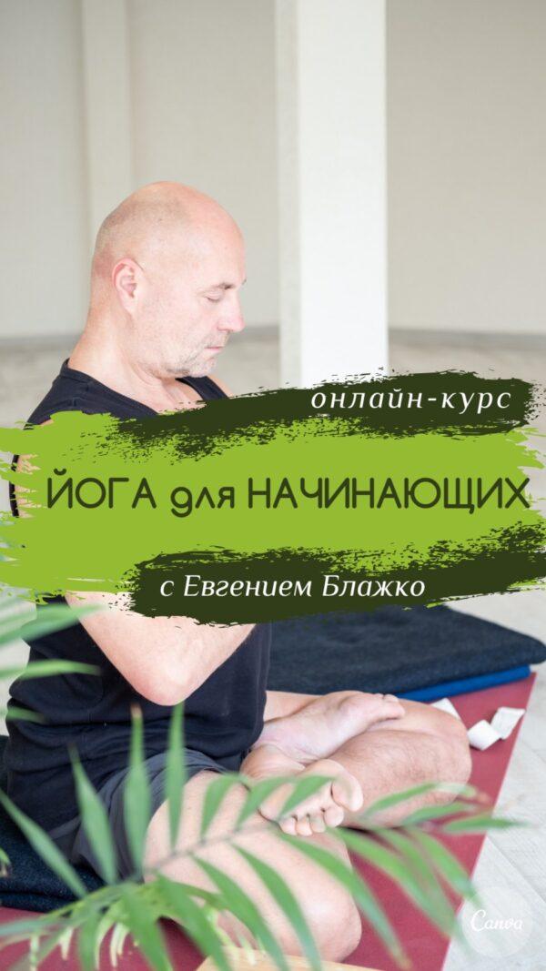 Курс по йоге в домашних условиях для любого уровня подготовки